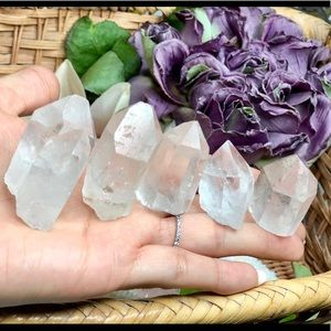 Bundle of 5 Natural Pointed Clear Quartz (Crystal)